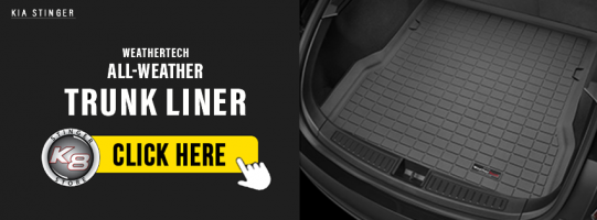 Weathertech Forum Post.png