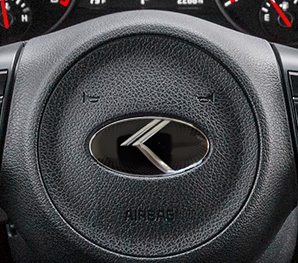 loden steering wheel badge close up
