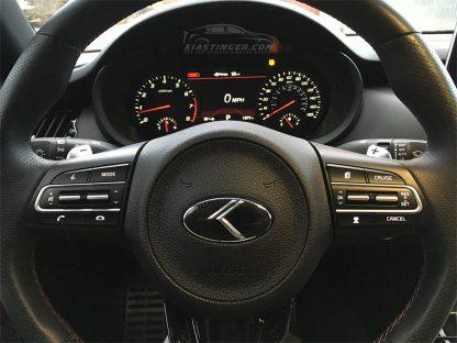 loden steering wheel emblem on kia stinger